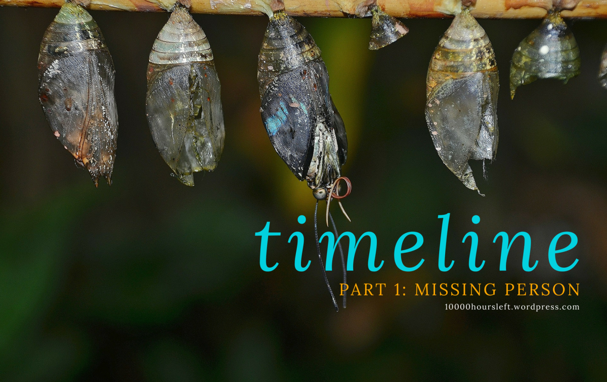 Image of cocoons and insect larvae for serial story 'timeline', part 1 titled 'missing person' creative writing