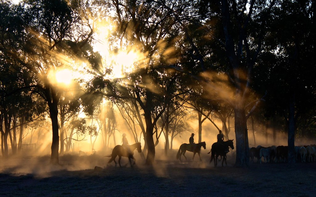 Photo of three people riding horses through the bush in an Australian cattle station. Used as a prompt for microfiction.